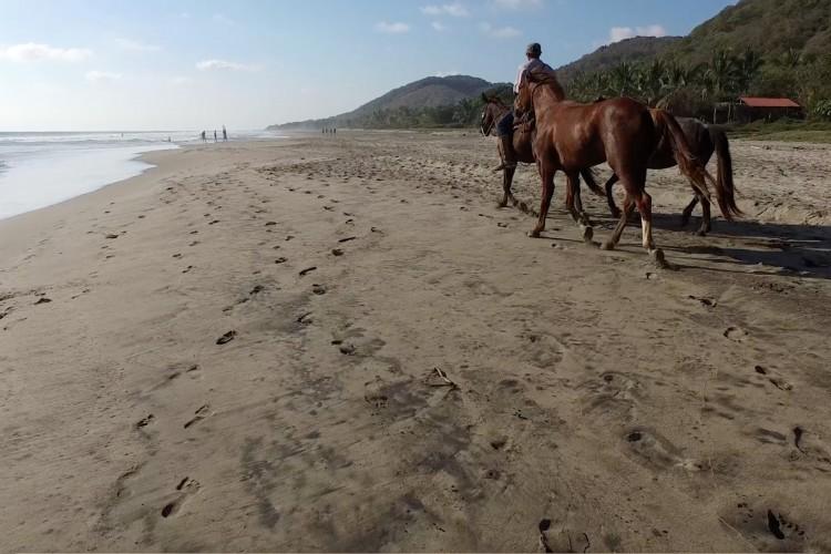 Troncones Horse Beach